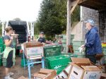 CSA Packing at Taproot Farms in Port Williams, NS