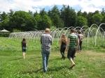 Touring the caterpillar tunnels at Broadfork Farm