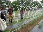 Bryan Dyck and Shannon Jones of Broadfork Farm