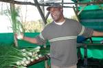 Apprentice at Abundant Acres, NS