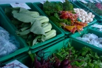Delicious organic vegetables from Waldegrave Farm, NS